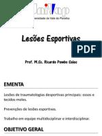 Revisão-01-Lesões-Esportivas