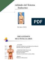 Clases_ Generalidades Sistema Endocrino , Hipotalamo-Hipofisis