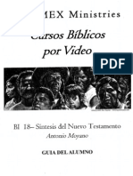 BI 18 Sintesis Del NT - Alumno