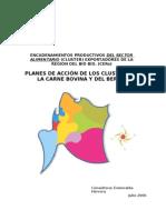 PLANES DE ACCIÓN DE LOS CLUSTERS DE  LA CARNE BOVINA .doc
