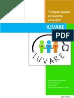 Plan de Trabajo IUVARE v Linea