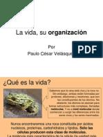 Clase Taxo Biol7