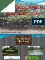 Boaque Seco Ecuatorial