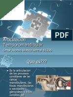 Articulacion Temporomandibular 1200295162942921 4