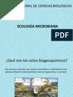 Ciclos Biogeoquimics