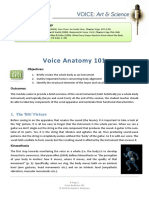 Voice Anatomy 101