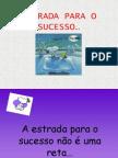 ESTRADAPARAOSUCESSO_1