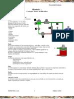 Manual Conceptos Basicos Hidraulica