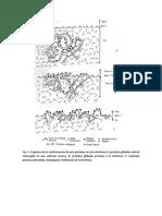 desnaturalizacion proteica