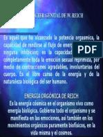 EL CARÁCTER GENITAL DE W. REICH