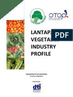 Vegetable Industry Profile of Lantapan,Bukidnon