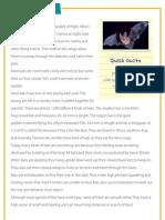 Bats - Reading comprehension