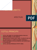 C6 - Post-Traumatic 2 (Fara Poze)