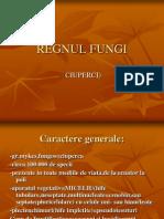 Regnul Fungi c