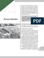 Geo12 5 Primary Activities