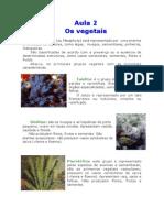 Biologia - Aula 02 - Resumo de Biologia Sobre Os Vegetais