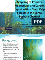 Mapping of Primary Productivity and Carbon Export within Giant Kelp Forests in the Santa Barbara Channel