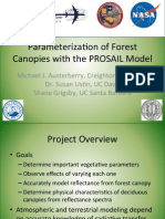 Parameterization of Forest Canopies with the PROSAIL Model