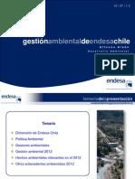 Gestión ambiental de Endesa Chile v jul-2013 v3
