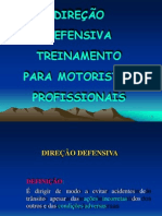 TREINAMENTO - DIRECAO-DEFENSIVA
