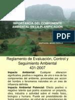 Presentación Instrumentos EIA