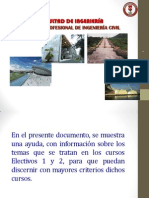Electivos 20132
