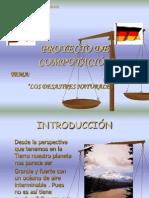 Pryecto Torres