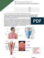 Atividade-01-Respiratorio-Visceral.pdf