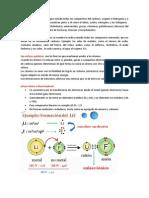 Diferencia química organica e inorgánica