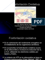 Procesos Bioloicos - 16 - Fosforilación oxidativa.29.05.09