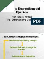 03 Sistemas Energeticos Ejercicio