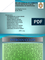 Diapositivas Sndrome de Dauw (3)