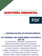 Evaluacion de La Auditoria Ambiental