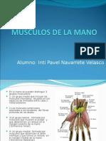 Musculos de La Mano -> Futura Médica
