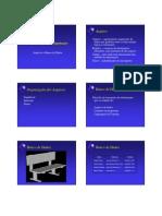 Organizacao de Arquivos
