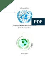 Guía Académica - Consejo de Seguridad 2013