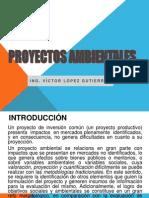PROYECTOS_AMBIENTALES_2013_-_1ra_Clase (2)
