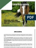 Manual de Practicas Equinas 11-01