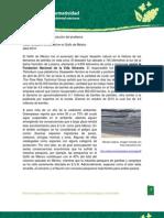 Actividad 2. Desastre Ambiental en El Golfo de Mexico