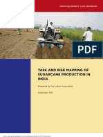 Sugarcane Production in India