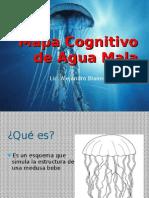 Mapa Cognitivo de Agua Mala