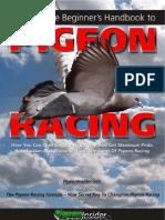 Ultimate Beginner Handbook Pigeon Racing