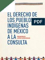 El Derecho de Los Pueblos Indigenas de Mexico a La Consulta