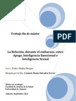 La_ relación_ durante_ el_ embarazo_ entre_ Apego_ Inteligencia_ Emocional_ e_ Inteligencia_ Sexual