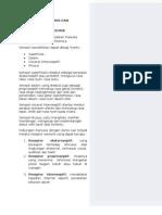 Pemeriksaan Sensorik Dan Patologis[1]