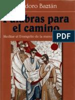 Baztan, Teodoro - Palabas Para El Camino, Meditar El Evangelio Con San Agustin