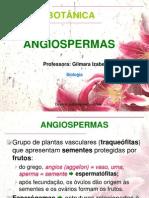 angiospermas-121009134619-phpapp01