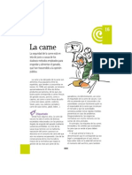 16carnes.pdf