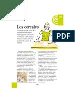 20harinas.pdf