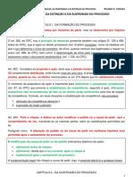 DPC - Da Formação, da Suspensão e da Extinção do Processo